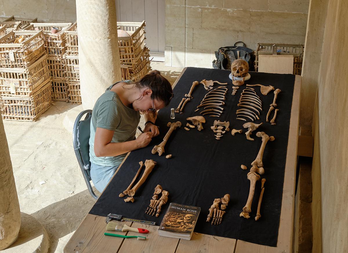 Digging Diary 5, 12-19 April 2019: How to protect the dead at Saqqara